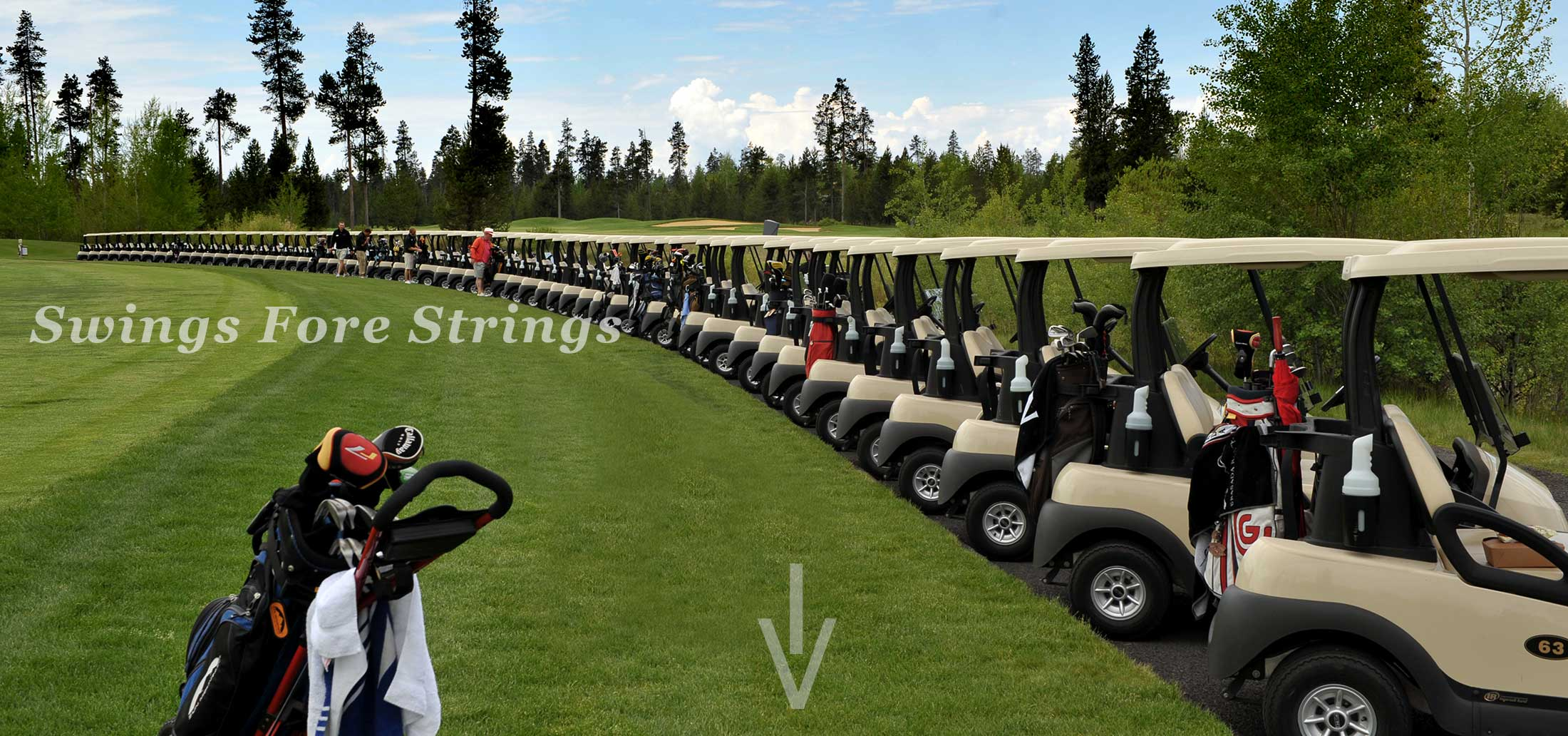 Sunriver Music Festival - Swings fore Strings